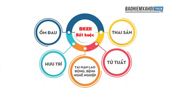 Các chế độ quyền lợi của BHXH.